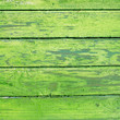 canvas print picture - The green wood texture with natural patterns background