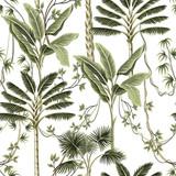 Tropikalne palmy rocznika, liana kwiatowy wzór bezszwowe białe tło. Tapeta egzotycznej dżungli. - 313479276