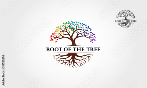 Obraz Root Of The Tree Rainbow - vector logo illustration. This logo symbolize a protection, peace,tranquility, growth, and care or concern to development. - fototapety do salonu