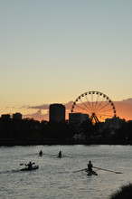 Sunrise Over The Yarra River With Rowers