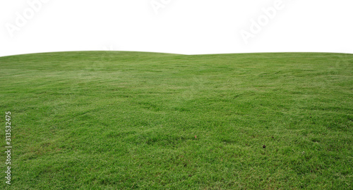 Fototapeta fresh green grass lawn isolated on white background obraz