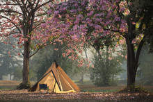 Camping Tents With Chair And T...
