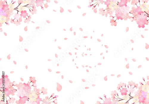 Fototapeta 水彩 手描き風 桜 背景イラスト 02 obraz