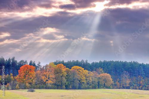 Fototapeta jesienny krajobraz na Warmii obraz