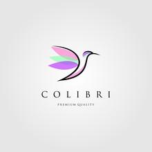 Line Art Hummingbird Logo Coli...