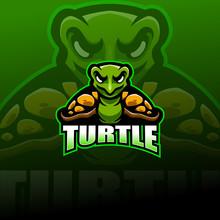 Turtle Esport Mascot Logo Design