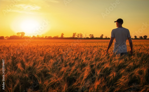 Fotografering Male farmer standing in a wheat field during sunset
