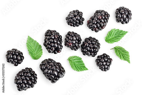 Fresh blackberry with leaves isolated on white background Tapéta, Fotótapéta