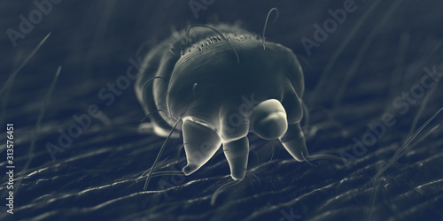 Photo 3d rendered illustration of a scabies mite on human skin, sem style