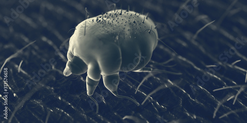 3d rendered illustration of a scabies mite on human skin, sem style Wallpaper Mural