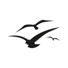 Seagull Icon. Simple Vector Illustration