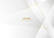 Abstract White Background With Golden Line Luxury.