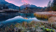canvas print picture - Awesome Alpine Valley during sunset with majestic mountain peak on background Scenic image of nature at lake Zelenci in autumn. Zelenci nature reserve. Triglav national park. Kranjska Gora, Slovenia
