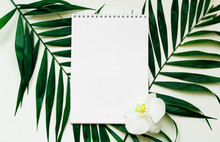 Tropical Background. Notebook ...