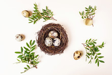 Quail Eggs Are In Decorative N...