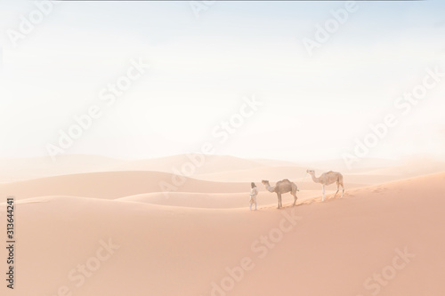Bedouin and camels on way through sandy desert Canvas Print