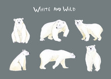 Watercolor Set With Polar Bear