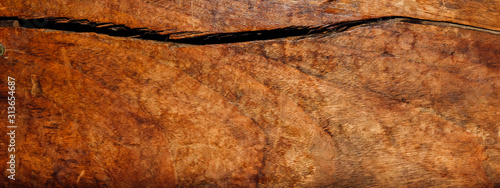 old wood background in whisky color Canvas Print