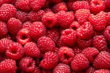 Raspberries. Fresh Juicy Raspb...