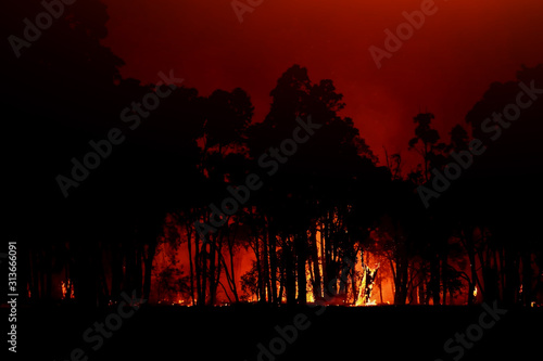 Aerial view forest fire on the slopes of hills and mountains Wallpaper Mural