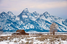 Moulton Barn And Teton Range In Jackson Hole Valley In The Winter