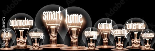 Fototapeta Light Bulbs with Smart Home Concept obraz