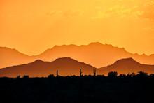 A Telephoto Sunset Of Saguaro ...