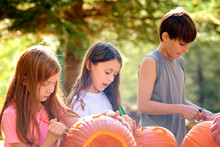 Three Young Children Carving Pumpkins Outdoors