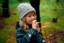 Active Child Touching Leaves On Branch In Forest