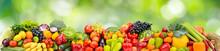 Panorama Multicolored Fresh Fr...