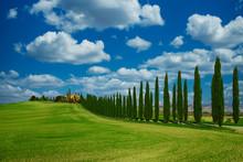 Tuscany Typical Landscape