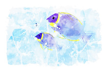Two Sea Fish On Blue Watercolo...