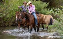 Horseback Riding In Creek