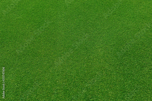 Obraz  top view of real green grass background - fototapety do salonu