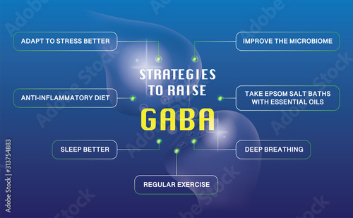 Photo STRATEGIES TO RAISE GABA is infographic work