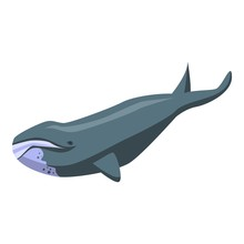 North Whale Icon. Isometric Of...