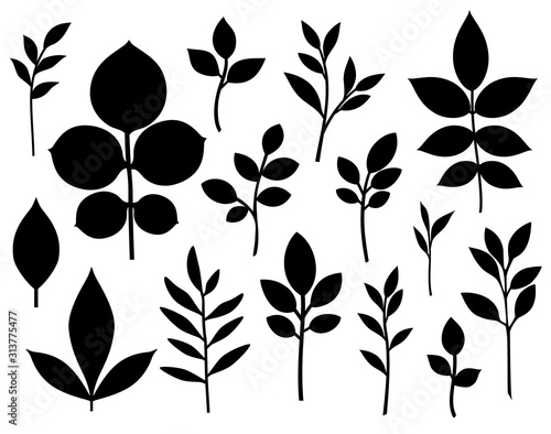 Obraz Set of decorative leaf silhouette. Different vector branches. Simple stencils - fototapety do salonu