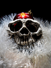 Front View Of Menacing White Human Skull With The Christmas Ball And Christmas Decoration On A Black Background Close-up.
