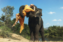 Mighty Elephant Lifting Up The Young And Beautiful Woman