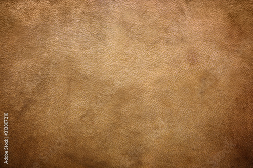 Obraz leather texture. simple background texture. - fototapety do salonu