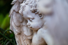 Sleeping Angel Statue Close Up