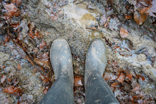 Wellington Boot Standing In A ...