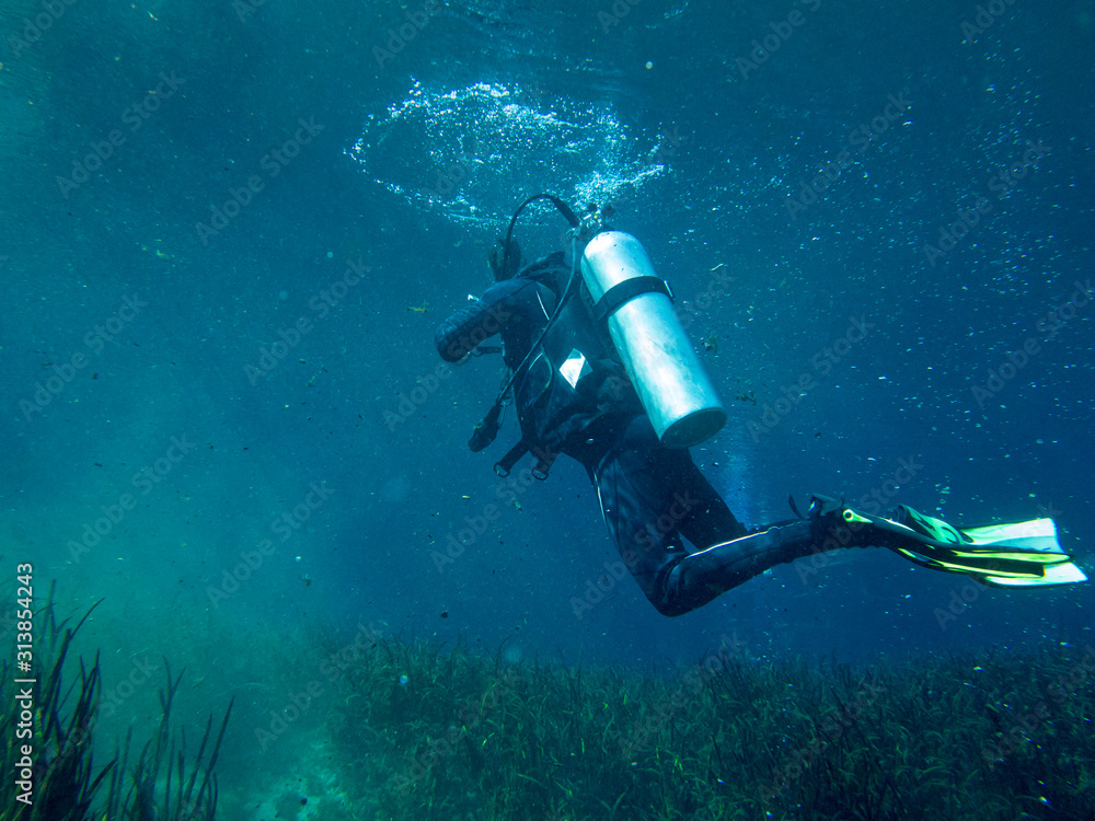 Fototapeta Underwater view of scuba diver in search and rescue exercise.