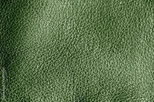 Valokuvatapetti Leather