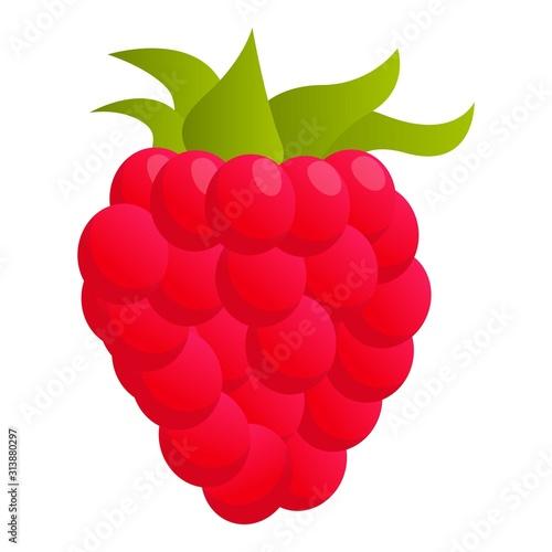 Cuadros en Lienzo Raspberry food icon