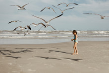 Little Girl And Seagulls On Be...