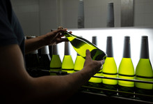 Worker Carefully Checking Bottle At Manufacture Cellar