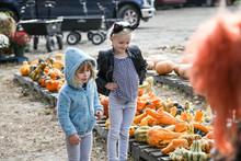 Two Girls In Pumpkin Patch Loo...