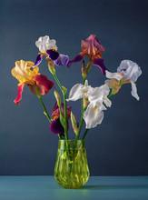 Bouquet Of Iris In A Vase