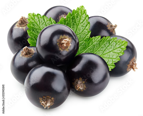 Black currant with leaves isolated on white background Canvas Print